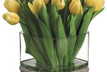Tulipani e fiori