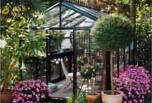 Greenhouses / by BROCK DESIGN GROUP