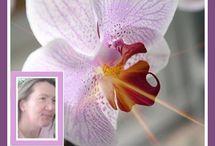 Love & Relationships / Die Liebe ist eine zarte Pflanze... drum kümmere ich mich darum..  When you know his heart...you know more.. http://www.Die-Liebesbotin.de