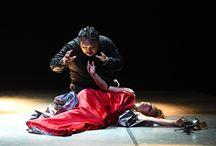 Rigoletto / Festival Verdi 2015, Info: http://www.teatroregioparma.it/Pagine/Default.aspx?idPagina=119