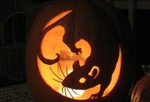 It's pumpkin time / by Longwood Vet Clinic