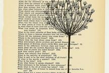 botany / by Savannah Wu