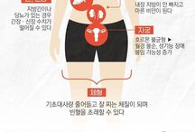 DIET 다이어트
