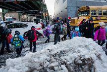 New York City Community Scene