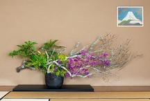 ikebana lite / Freestyle and artistically pleasing to the non-Asian as well