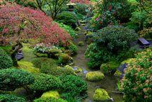 Japonské Záhrady
