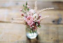 kukkia, flowers