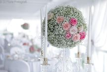 Gypsophila (baby's-breath) / by Marina {Concept Events Planning}