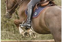 Equestrian Things