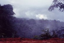 Africa/ Gabon