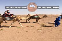 circuit au maroc / DESERT VIE est une agence de tourisme marocain qui organise des excursions et expéditions en 4x4 dans le sud marocain , Treks désert et Montagne, organisation bivouacs dans le désert marocain , nous vous proposons aussi un voyage au Maroc qui combine Montagne , Désert et Mer, voyage et séjours vers les villes impériales , excursion de la journée depuis Marrakech , Agadir , Essaouira ,Ouarzazate, Casablanca et Fez ou bien autre ville au Maroc. Lire la suite
