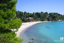 HalkidikiTravel.com - Akti Koviou beach in Halkidiki