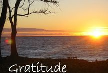 The Gratitude Magnetism