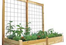 Gardening - Raised Bed