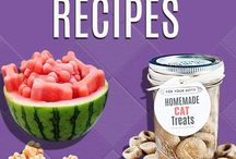 Home made dog food / Recipes and other healthy tips for our four legged best friends.