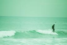 surf / by Alita Petras