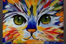Katzen Bilder