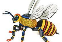 Luis Pablo Spectacular Bee
