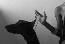 black&white / by Salvatore Cultrera