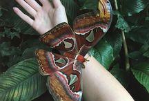 Butterfys mariposa