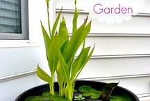 Water garden / Water garden ideas