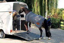 NZs most innovative, stylish & highest quality horse floats
