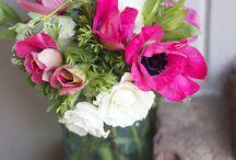 Flowers / Beatiful flower arrangements / by Katy Selzer