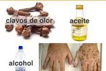 remedios caceros