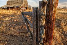 ogrodzenie I brama