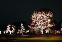 Holidays / Plano-area events and happenings for kids and families in the Plano area
