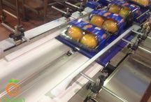 Confezionamento kaki - Persimmon packaging / Il nostro stabilimento è attrezzato per il confezionamento automatizzato dei kaki (persimmon). Siamo attrezzati con 1 Linea di confezionamento dotata di banchi di lavorazione, 3 macchine confezionatrici ed 1 macchina peso-prezzatrice; #kaki #persimmon #cachi