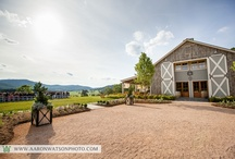 Charlottesville Wedding Venues / by Aaron Watson
