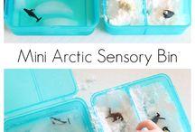 Baby - Sensory Bin