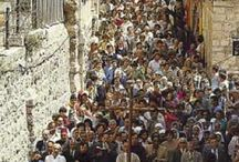 Holy Land- Via Dolorosa