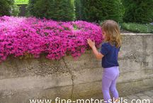 Gardening with Kids or Growing plants with Kids