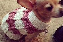 Crochet: Pet Wearables / by Teresa Penny