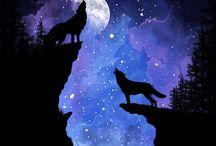lupi care urla la luna