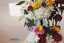 flower eater / buds that bloom / by sophia
