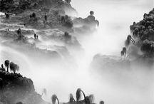 Landscape / B+W Landscape photographs