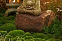 Meditation Garden / A moment to meditate with nature.