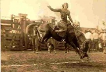 Cowgirls:  Not Afraid To Fall / Sometimes you just have to hang on and hope to survive the fall. Some of the great female bronc riders included Kitty Cannutt, Louise Thompson, Tad Lucas (Nebraska, 1902-1990), Alice Greenough (Montana, 1902-1995), Bonnie McCarroll (Idaho, 1897-1929, photo not of her fatal fall), Fox Hastings (California, 1898-1948, suicide), Fannie Sperrie Steele (Montana, 1887-1983). Claire Belcher, Bobby Kramer (Montana 1913-2005) and Marge Roberts. Women banned for years after 1945.  / by Debra