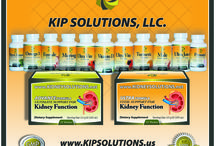 KIP SOLUTIONS PRODUCTS LINE