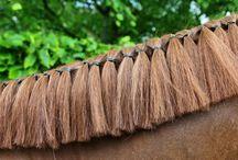 Perfect Horse Hair