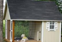 Dog Houses / by Kristin Allen