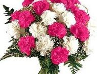 send flower to ahmednagar