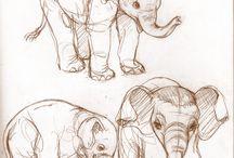 dieren tekeningen