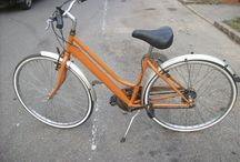 bici maria