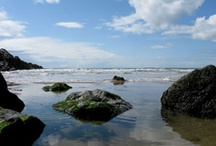 Gower Holidays / The Gower Peninsula is a hidden gem just to the west of the city of Swansea in South Wales. Gower Edge provides pet friendly self catering for up to 8 people. Llke it? Book it! www.gower-edge-holidays.co.uk