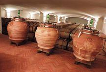 Biodivino / il meraviglioso mondo dei vini bio e biodinamici