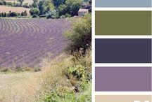 Web Colors / by Alison Mock